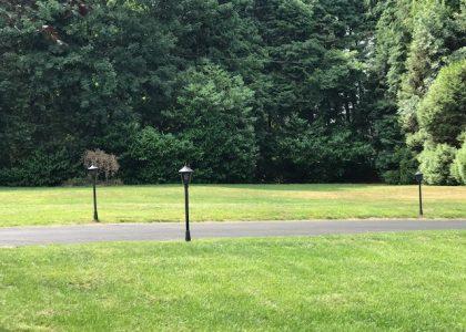 Cartref Croeso lawns